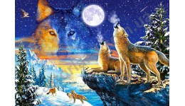 Пазл Касторленд 1000 (3317) Вовки  68*47 см
