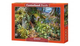 Пазл Касторленд 2000(764) Лісова поляна   92*68 см