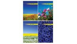 Канцелярська книга А4 BUROMAX 2400 тв. обкл. 96арк. клітинка (1/10)