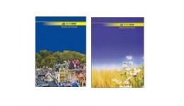 Канцелярська книга А4 BUROMAX 2401 тв. обкл. 96арк. ЛІНІЯ оф. (1/10)