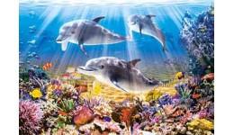 Пазл Касторленд  500 (1014) Дельфіни  47*33 см