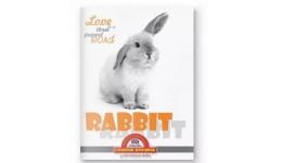 Дитячі шкарпетки DUNA 471 демі  16-18 світло-рожеві 75%бавовна  23%поліамід  2%елас