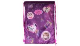 Сумка д/взуття CLASS 9943  Lovely Kitties  46*33см (1)