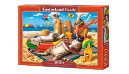 Батарейки Westinghouse Super Heavy Duty AA/R6 plastic case (S24) (24/144)