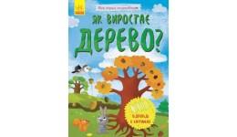 Моя перша енциклопедія: Як виростає дерево? (відповіді у картинках) (у)(50)