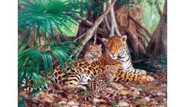 Пазл Касторленд 3000 (280) Леопарди  92*68 см