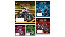 Зошит 12 клітинка  Disney 11902 Frozen Best ТЕТРАДА (25/250)