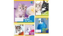 Зошит 12 клітинка  Disney 11918 Frozen Сніжна ТЕТРАДА (25/250)