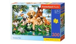 Пазл Касторленд  200 (2063) Літні друзі 40*29 см